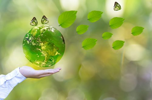 Green world with butterfly and leave in man hand, green background, Earth image provided by Nasa.